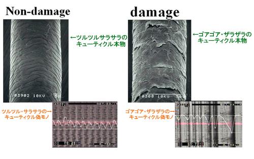 ~TACTILE~ レーザ微細加工と触感!!:(株)リプス・ワークス